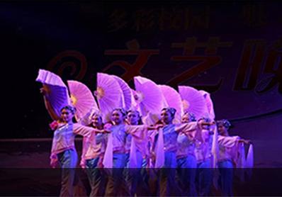 bte365国际文化活动